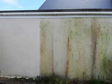 Soft washed Building Before And After