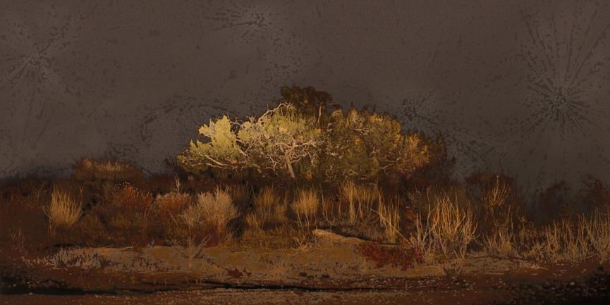 ART SILICON VALLEY | SAN FRANCISCO | 2014