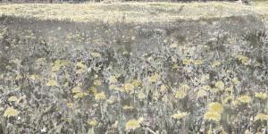 Aziz + Cucher, Scenapse Field #13, c-print on Endura Metallic paper with diasec mount, 91.4 x 183cm, 2013