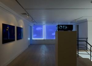 Walter Hugo & Zoniel, The Constellation of Toki, 2014