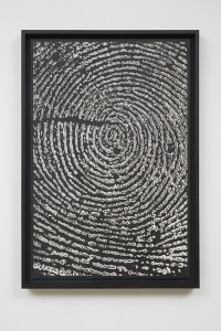 Alinka Echeverría, M-Theory VIII, 2015, platinum-palladium prints, floated on museum board and framed in hardwood stained frames, 75 x 50 cm