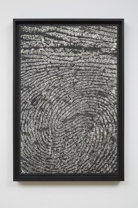 Alinka Echeverría, M-Theory III, 2015, platinum-palladium prints, floated on museum board and framed in hardwood stained frames, 75 x 50 cm