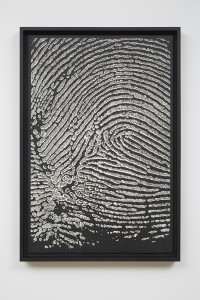 Alinka Echeverría, M-Theory I, 2015, platinum-palladium prints, floated on museum board and framed in hardwood stained frames, 75 x 50 cm