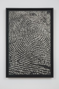 Alinka Echeverría, M-Theory IX, 2015, platinum-palladium prints, floated on museum board and framed in hardwood stained frames, 75 x 50 cm