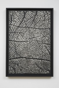 Alinka Echeverría, M-Theory II, 2015, platinum-palladium prints, floated on museum board and framed in hardwood stained frames, 75 x 50 cm
