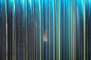 Forest Lambda print, 150 x 100 cm, 2010