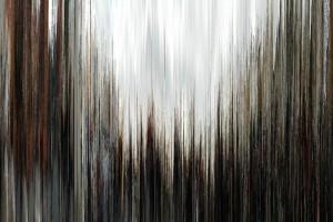 p1rd Lambda print, 150 x 100 cm, 2010