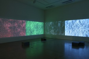 Point of Recognition, 4-channel video installation, projector, dimensions variable, 2012