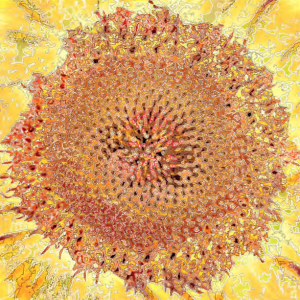 A+C - Scenapse_HE_IOS, 101.5 x 101.5 cm, 2013