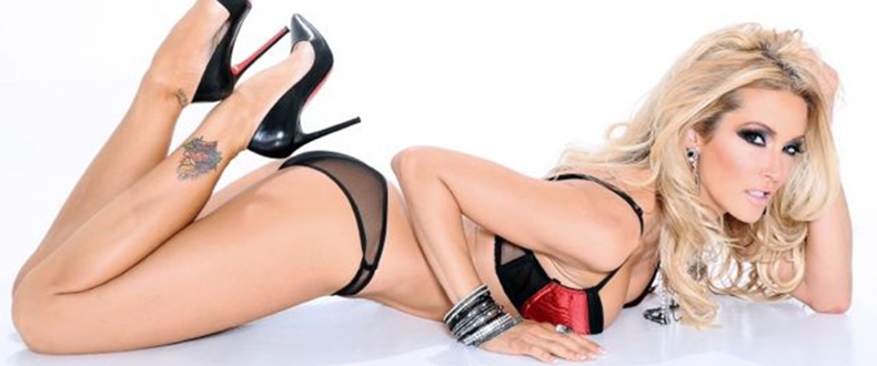 Jessica Drake's Guide to Wicked Sex