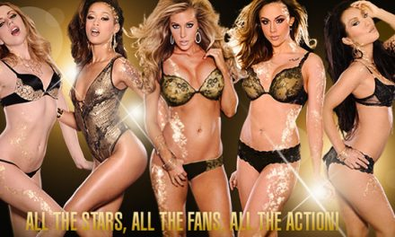 Adult Entertainment Expo 2013 Highlights