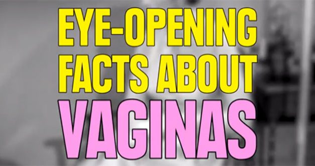 Eye Opening Facts About Vaginas