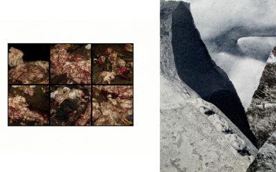 Cano Erhardt (Galería Luis Burgos) + Virginia Inés Vergara