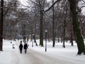 Snow in Slottsparken, Oslo