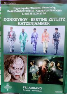 Donkeyboy street poster