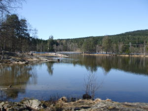 Sognsvann this morning