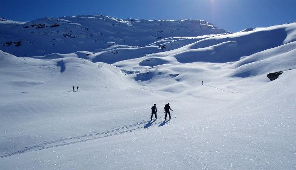Cross Country Ski - CC License from Wikipedia - Erik W. Kolstad