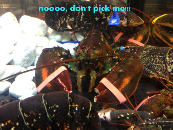 Poor seafood