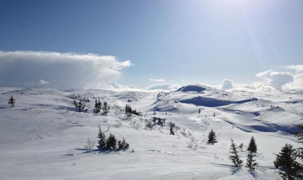 Geitfjellet, Nord-Trøndelag
