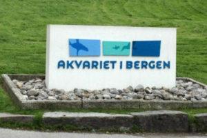 A Watery Day in Bergen Part 2: Bergen Aquarium