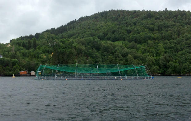 Fish farm on Osterfjorden