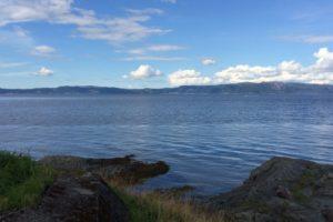 Trondheim Walks: Lade & Korsvika Beach