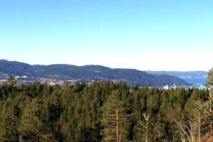 Trondheim Walks: Strindamarka