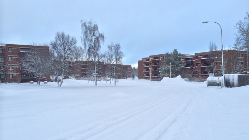 Moholt in the winter