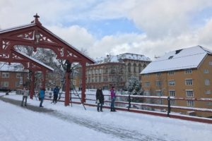 Trondheim in the Snow
