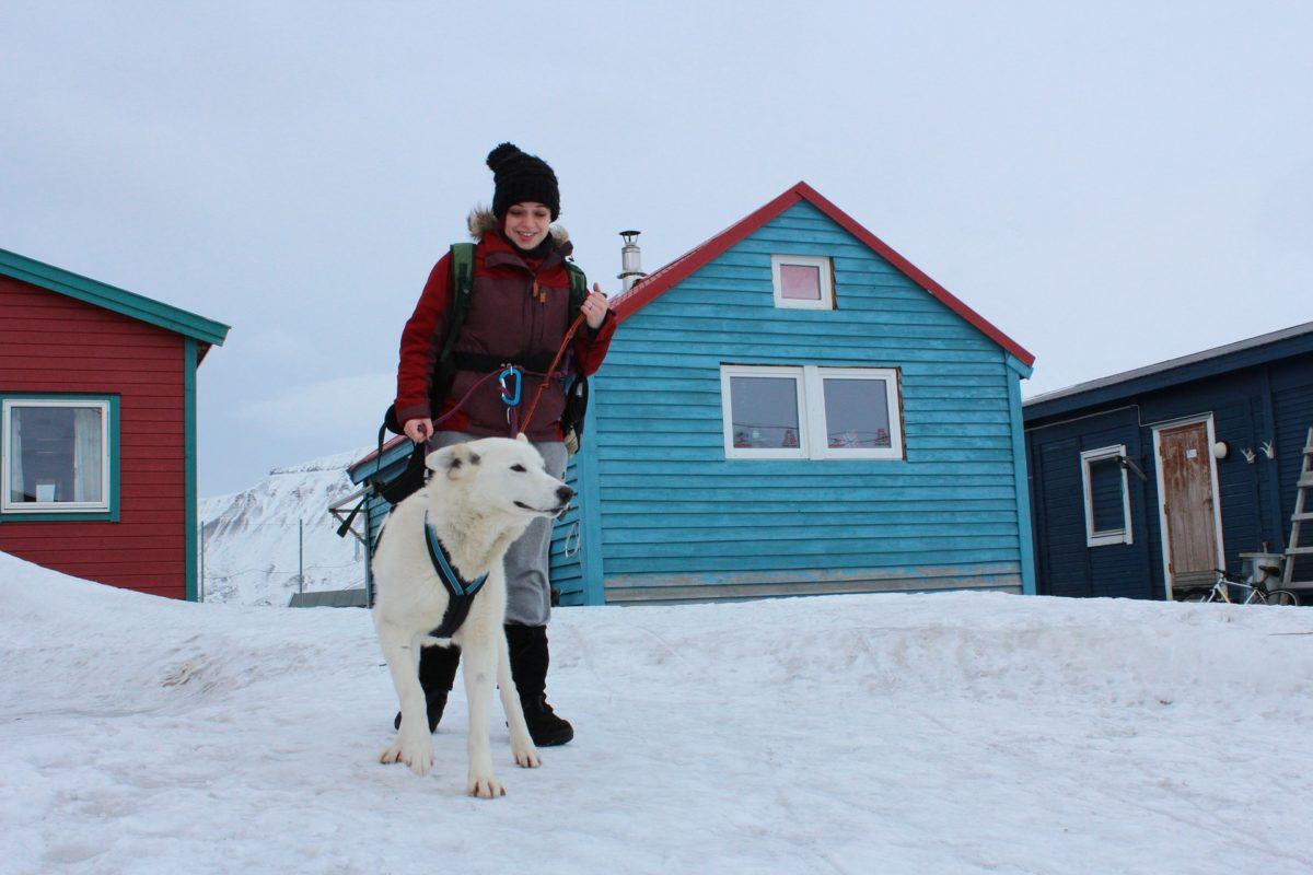 Dog in Longyearbyen