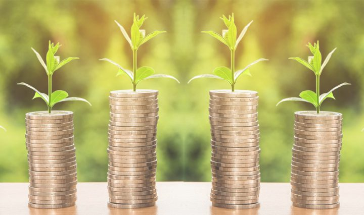 saving for your child's future - stacks of coins with trees growing out of them