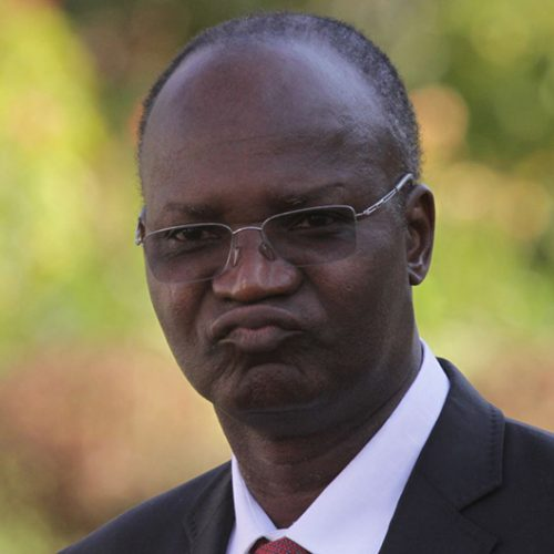 Prof Moyo Twitter disaster; Zhuwao apologises to offended party colleagues