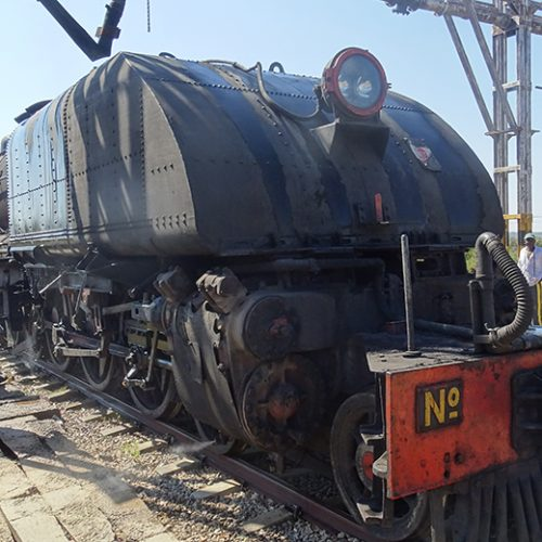 NRZ steam train attracts foreign enthusiasts