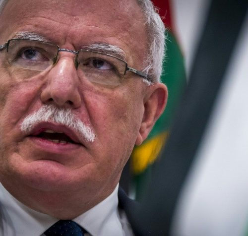 Palestinians urge immediate ICC probe into 'Israeli war crimes'