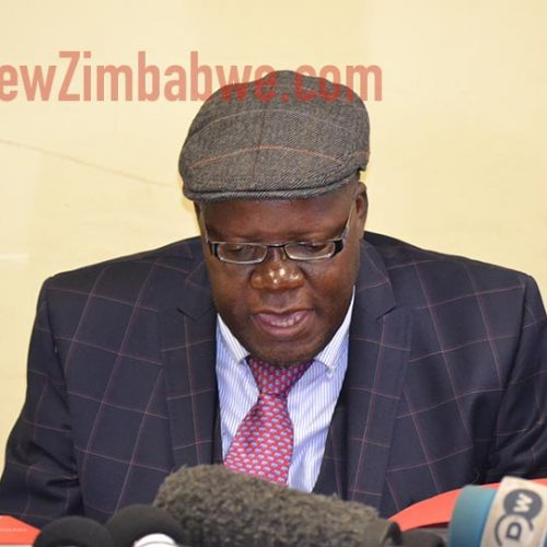 'Real reason' Biti was booted out of Zambia
