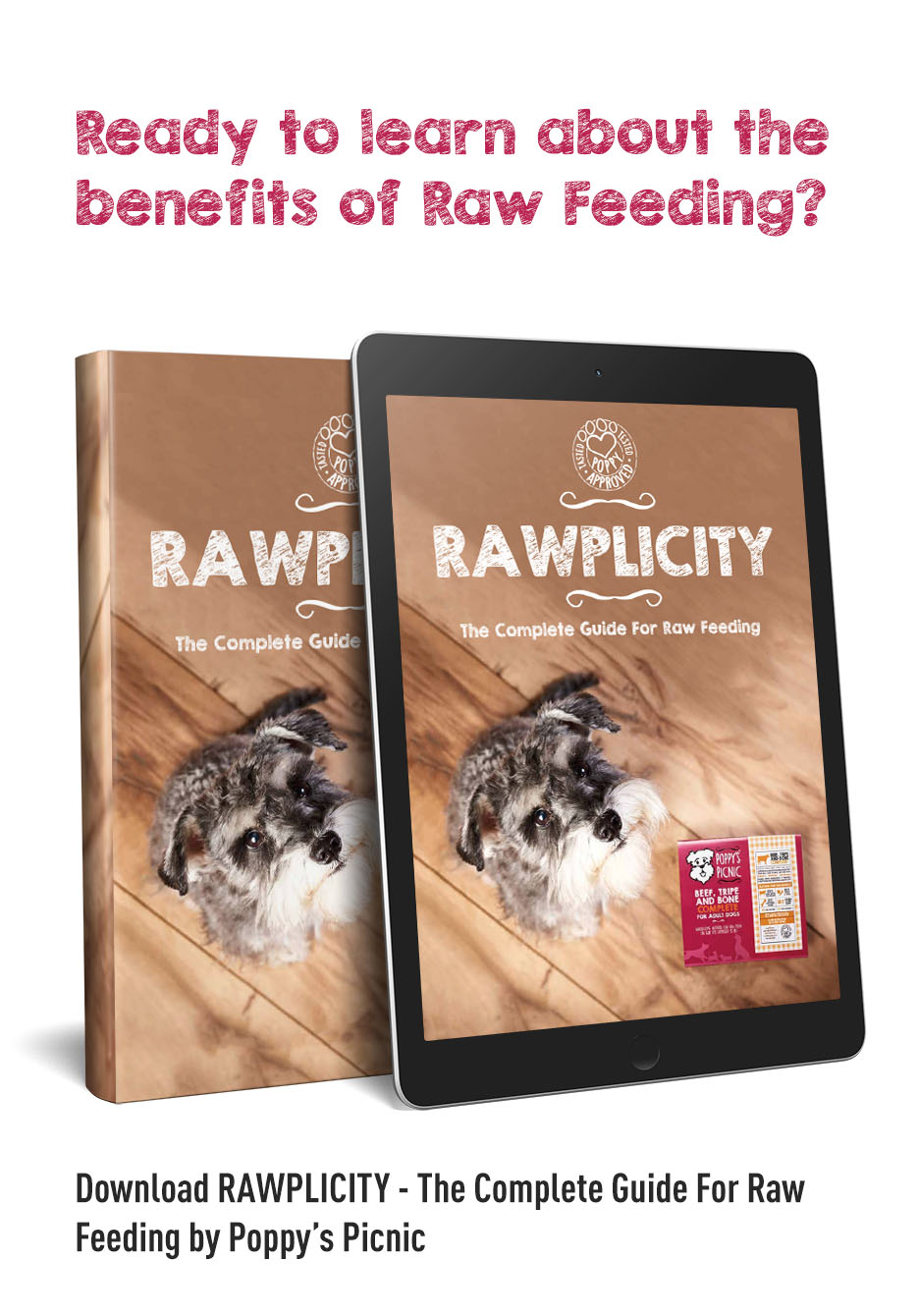 Natural Raw Dog Food Near