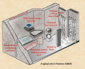 florence-typical-cell-300x244
