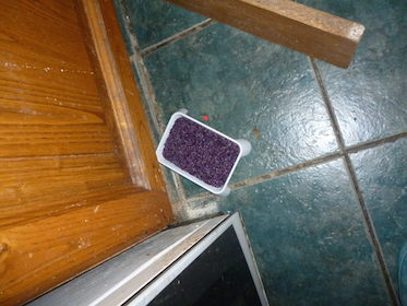 open-rat-poison-tray-from-under-units-in-kitchen-j-grayson-small