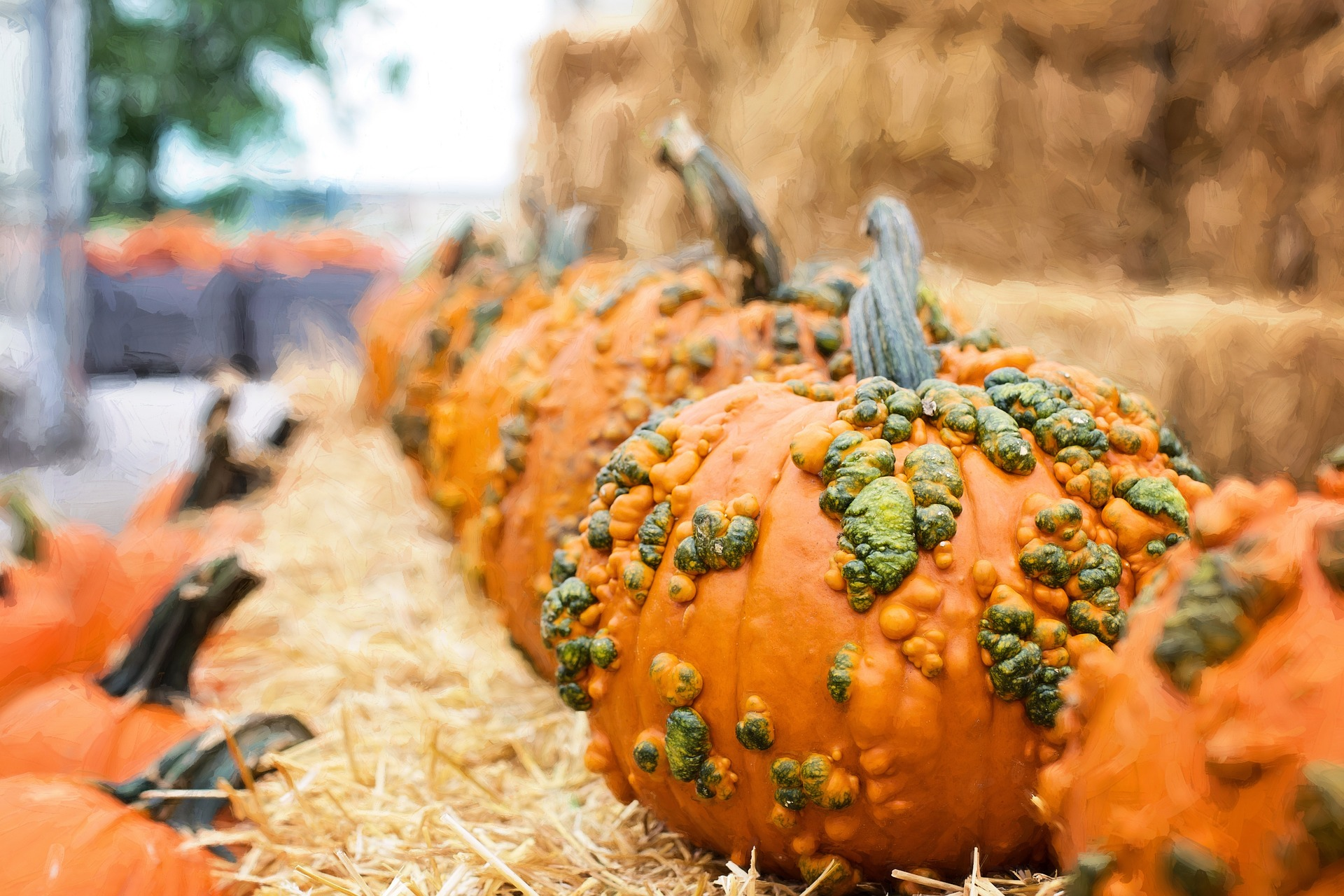 National Pumpkin Day - Food Fun and Crafts - Appliance City