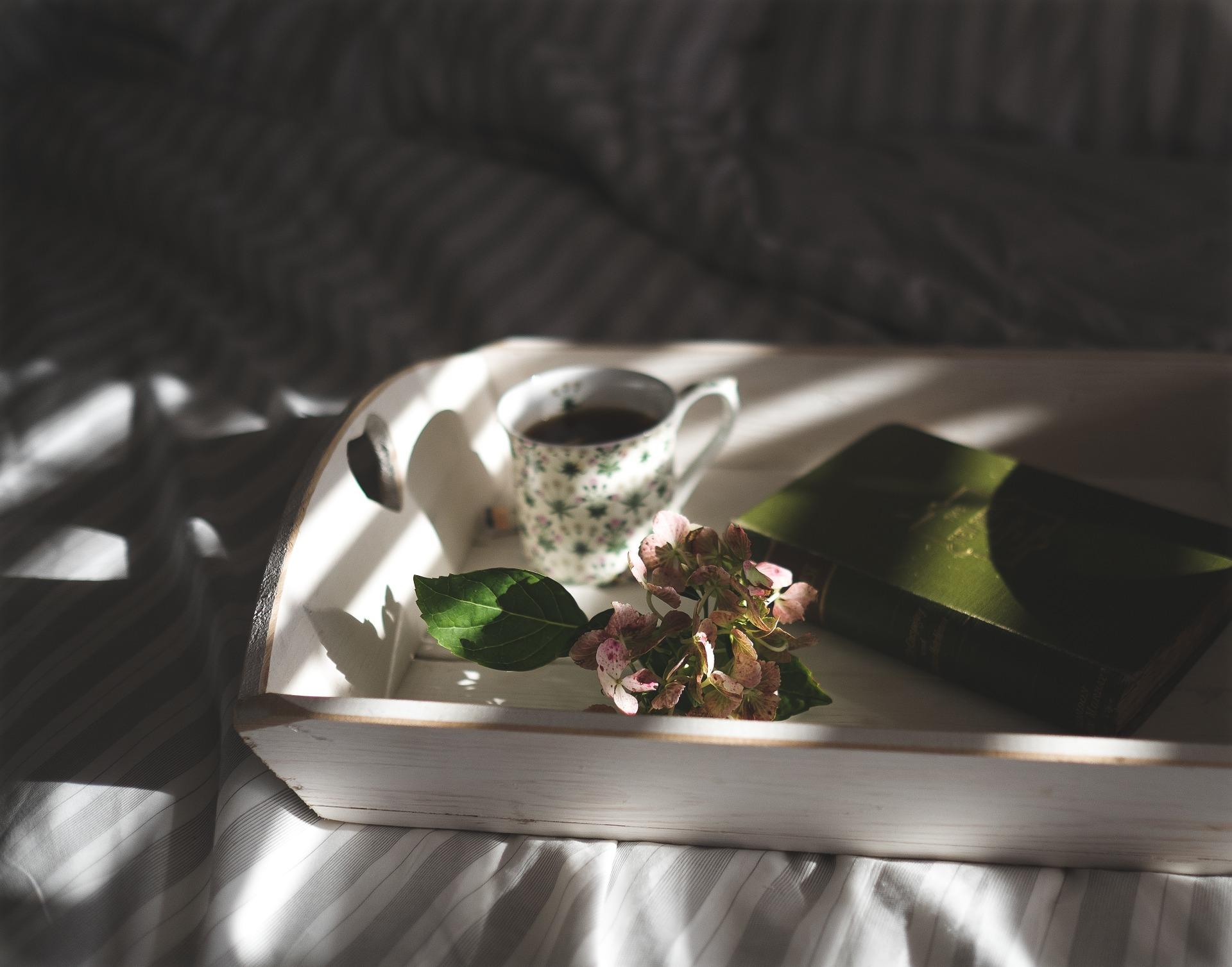 Food Months - Appliance City - Tea