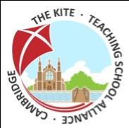 The Kite TSA