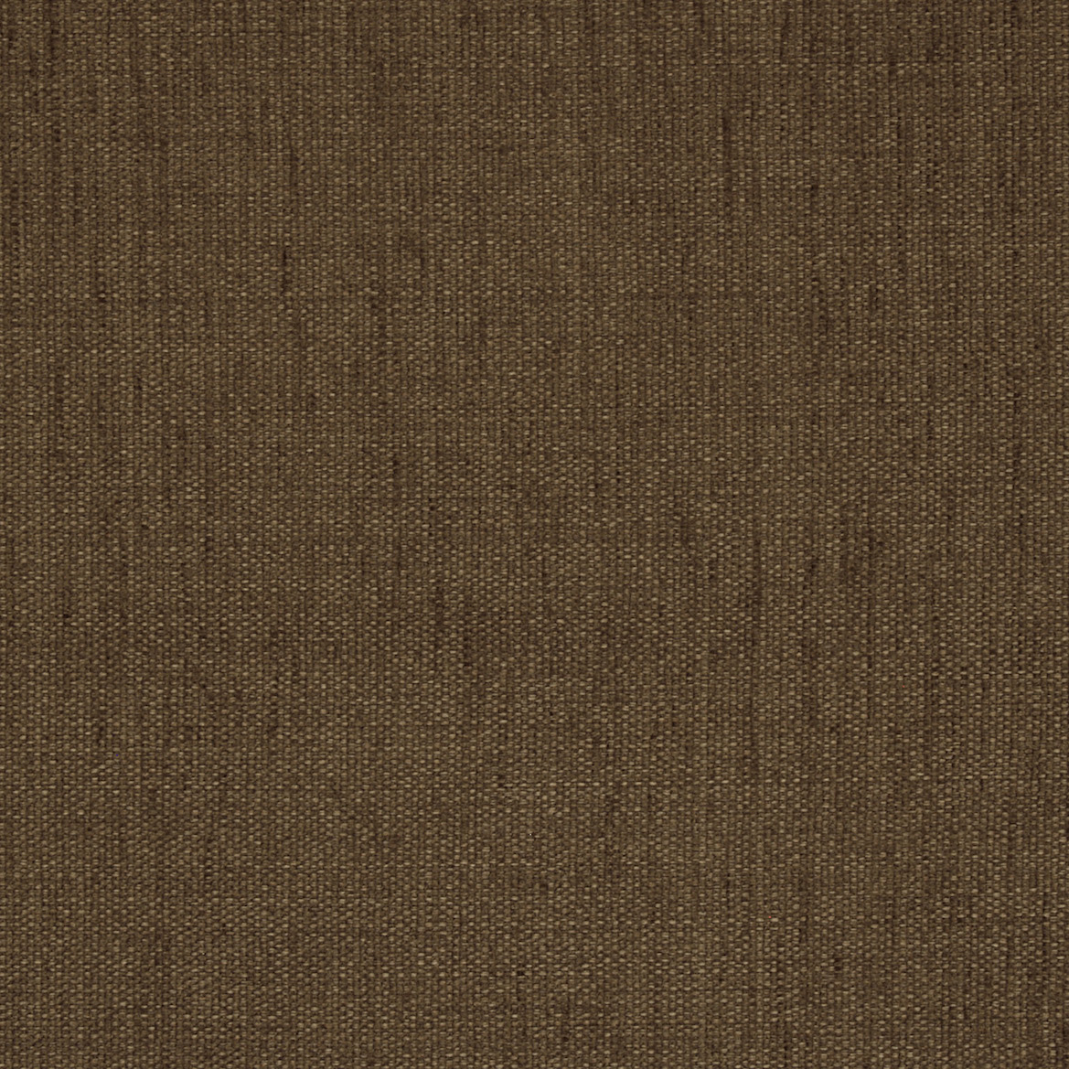 1 Vera brown grey