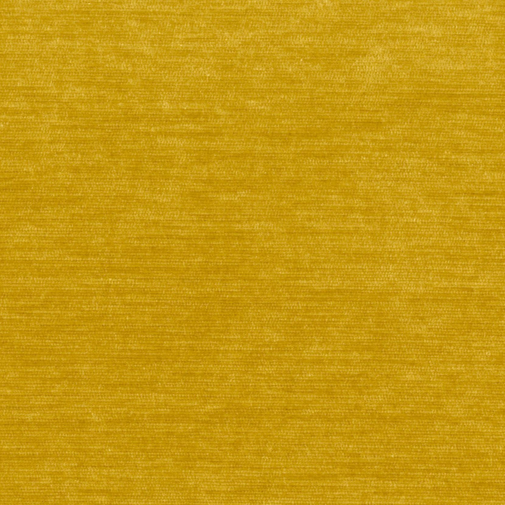 3 Elyot mustard