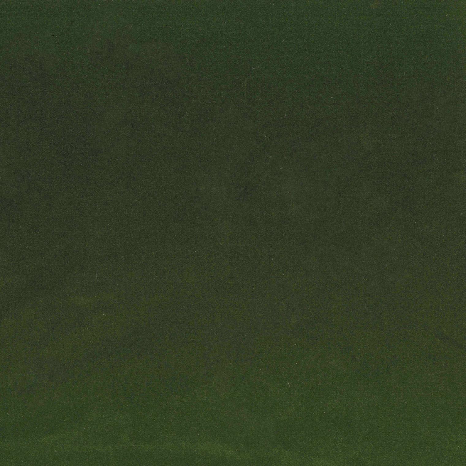 EXCL. Lario green