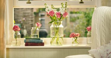 Natural ways to purify the air in your home PICTURE