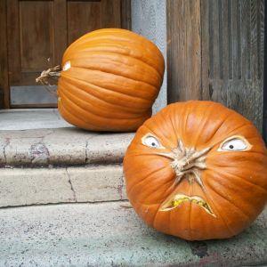 pumpkin 2197329 1280