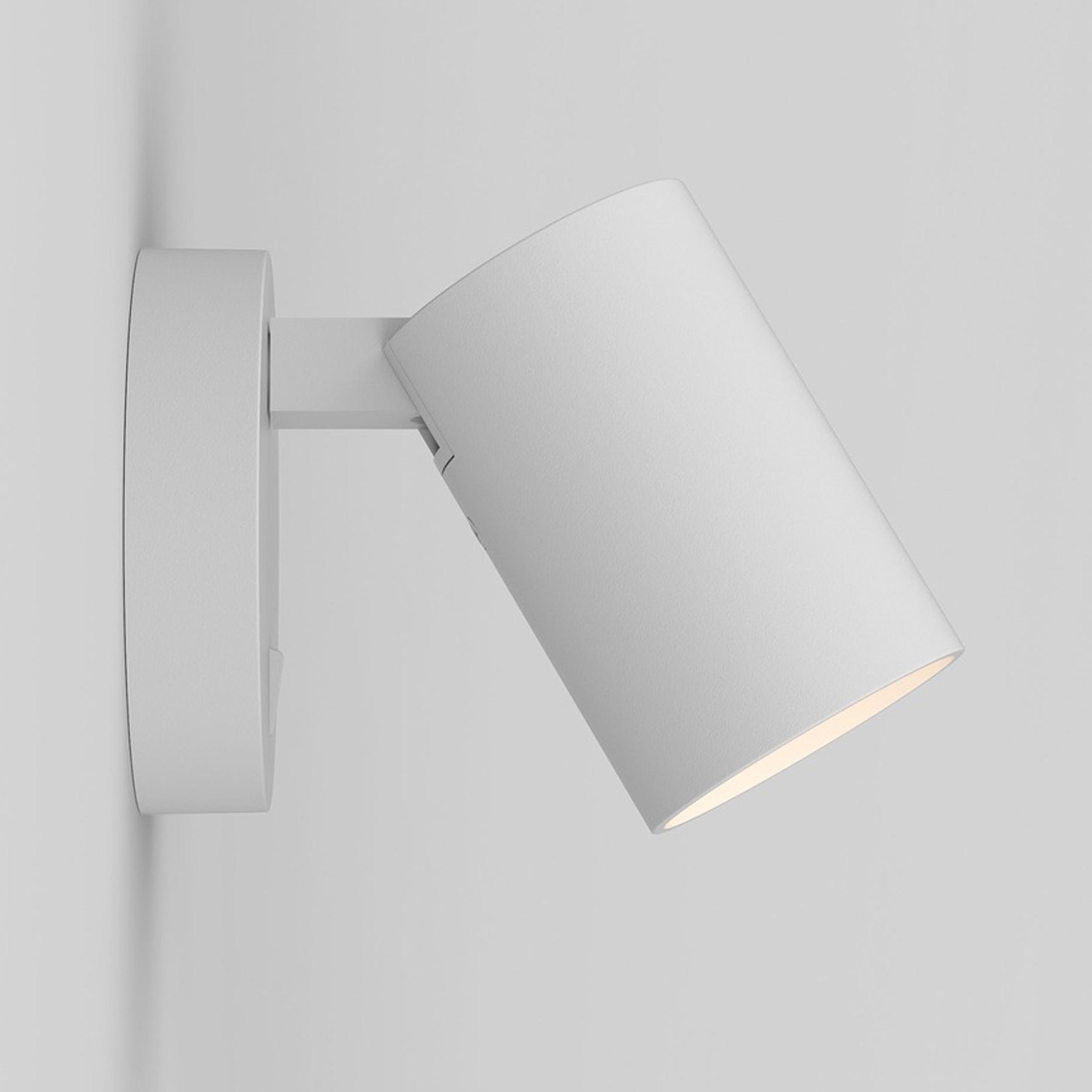Astro Ascoli Switched Single Spotlight White C