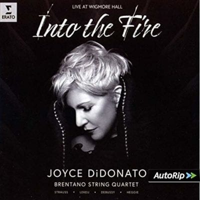 Into-the-Fire1