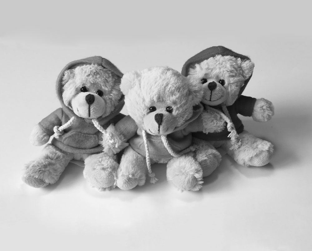 An image showing the teddy bears sold on Kingswood's e-commerce store