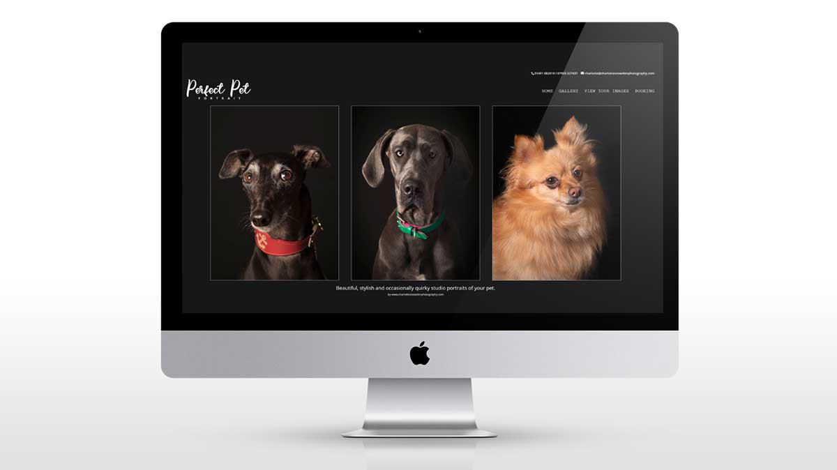 new web design for charlotte snowden photography